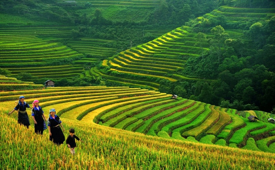 sapa - the places to visit in vietnam