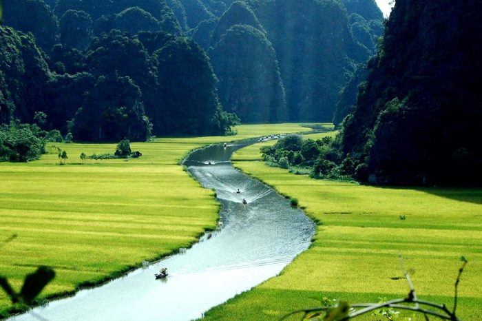 Ninh Binh 1 Day Tour: Hoa Lu – Tam Coc